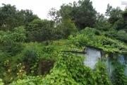 Terrain Constructible de 688 m² à la Chaloupe st Leu