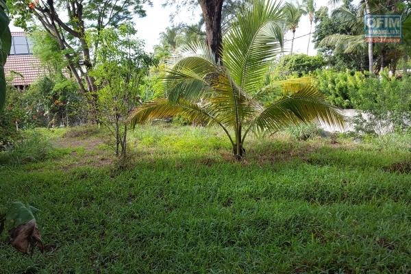 A VENDRE très beau terrain CONSTRUCTIBLE, plat, borné de 4640m2 à la Plaine des Palmistes