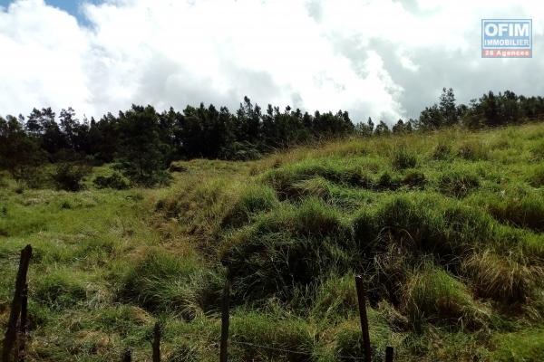 Terrains agricoles de 2800 m2 au Cap Camélia