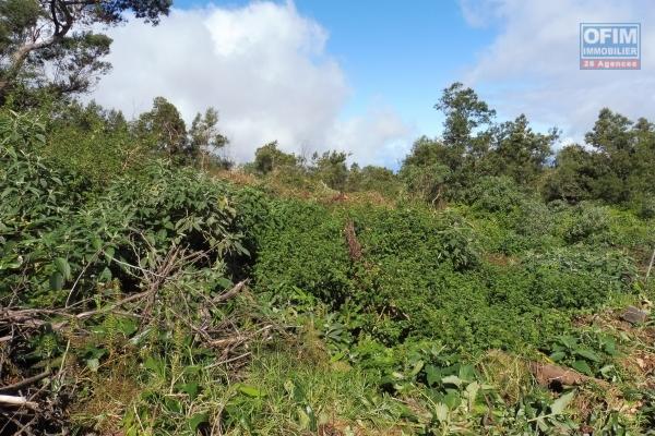Terrain agricole de 1950 m2 au Cap Camélia