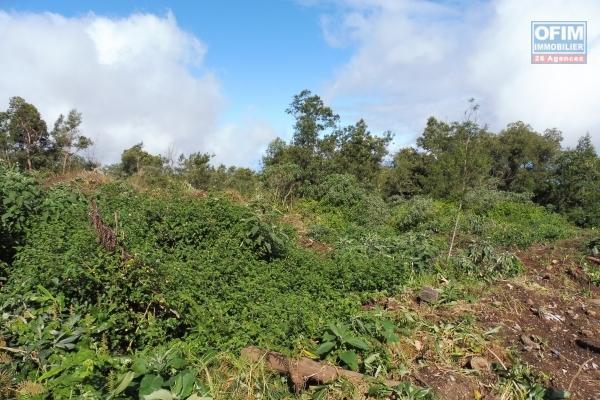 Terrain agricole de 1765 m2 au Cap Camélia